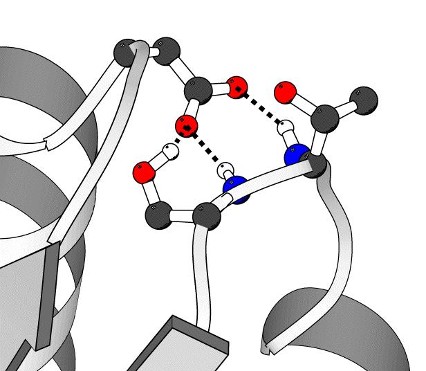 hydrogen bonding example